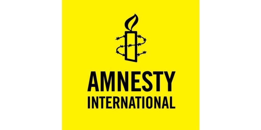 amnesty international solutions stockage professionnels